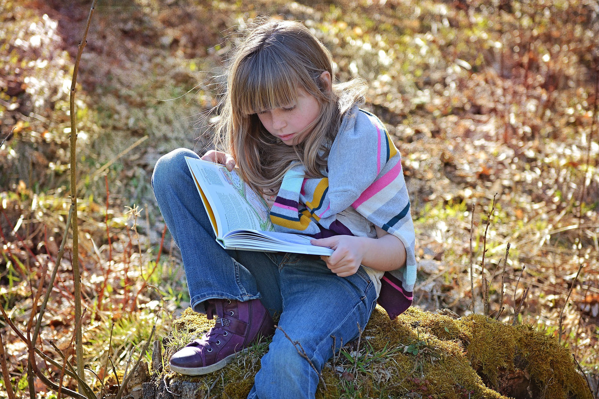 Introducing a book series to a child is a great way to encourage recreational reading.